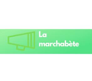La-marchabete-pour-le-diabete-3